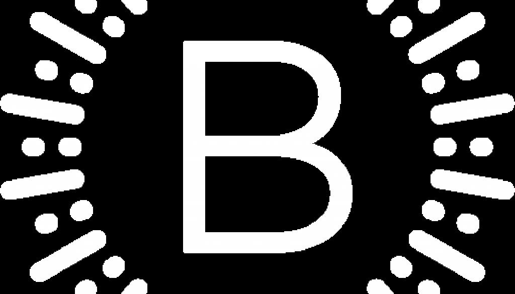 BerrySkates-B-WHITE-500w